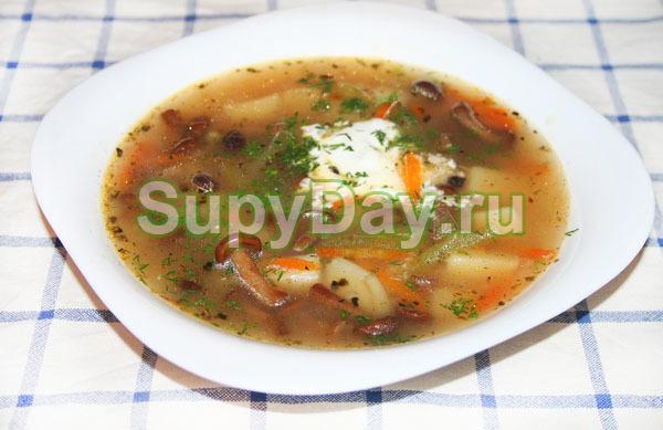 Классический рецепт грибного супа из опят