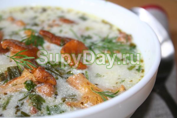 Диетический суп из рыжиков