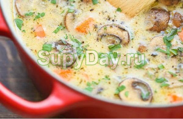 Куриный суп из цветной капусты с грибами