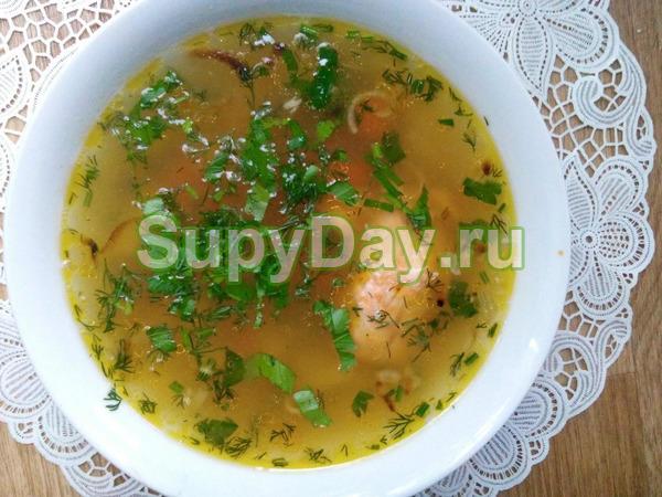 Рыбный суп из семги с лапшой