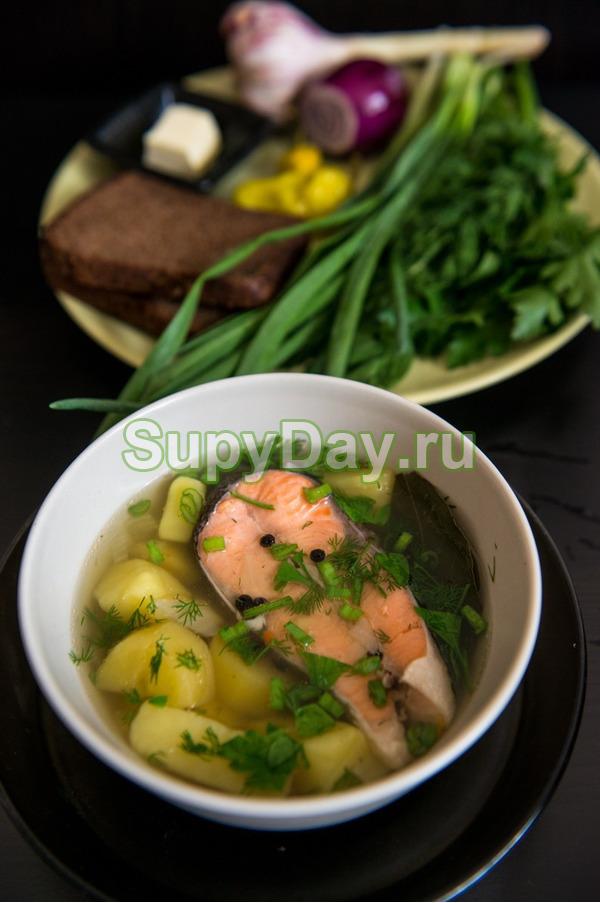 Рыбный суп из форели и чечевицей