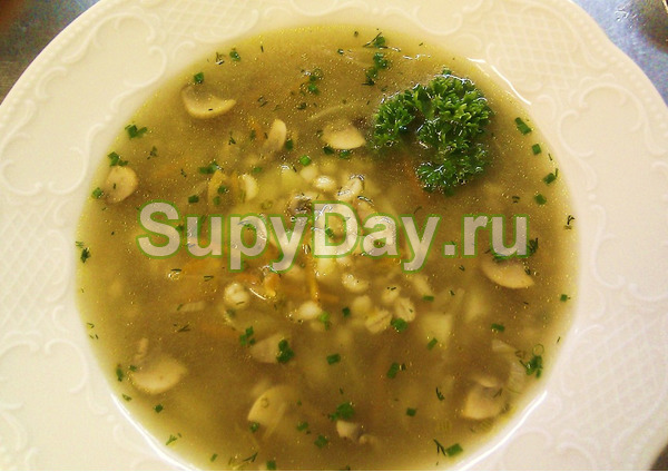 Грибной суп в мультиварке из замороженных грибов – простой